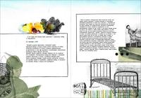 http://dimaze.com/portfolio/files/gimgs/th-36_pages_12-13.jpg